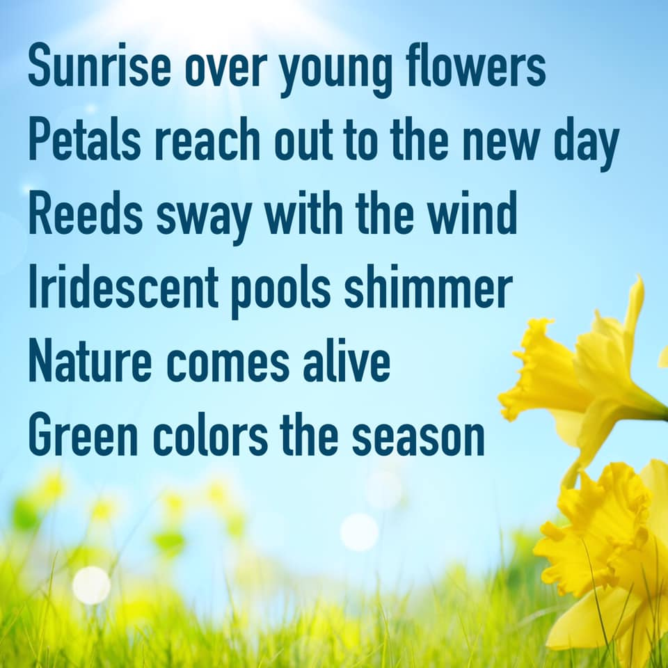 2-Spring