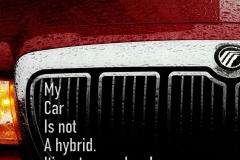 13-Hybrid