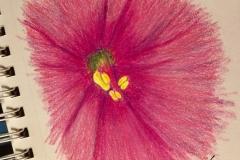 10_FlowerCenter