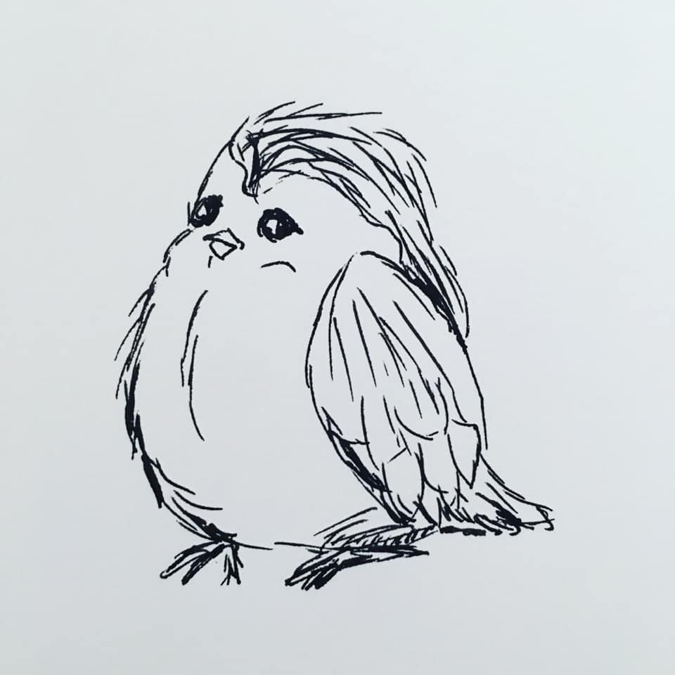 Day27-Bird