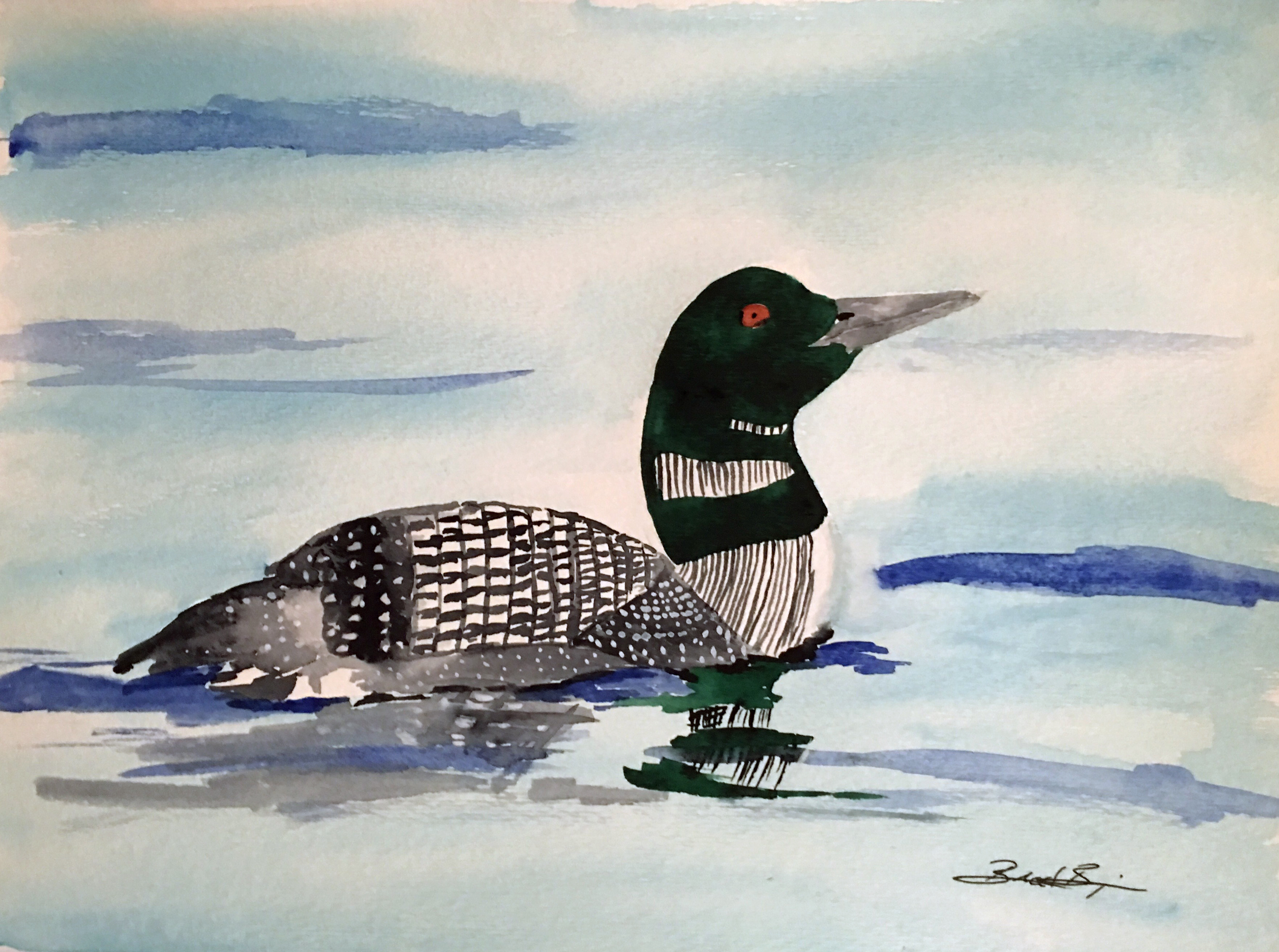 17_Common_Loon-MN